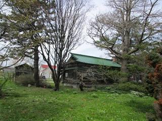 gannsuienn2.jpg